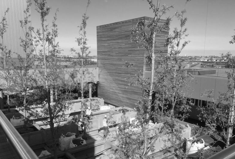 Trær og trestammer pryder Københavns nye kraftverk