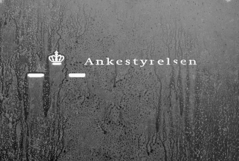Ankestyrelsen (Danish Appeals Authority)