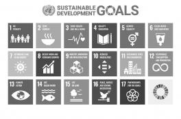 Gottlieb Paludan Architects' Annual Sustainability Report 2019