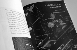 Room for Rain: Ny erhvers-PhD om urban klimatilpasning