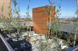 Træer og træstammer pryder Københavns nye kraftværk